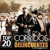 Play & Download Top 20 Corridos Delincuentes by Various Artists | Napster