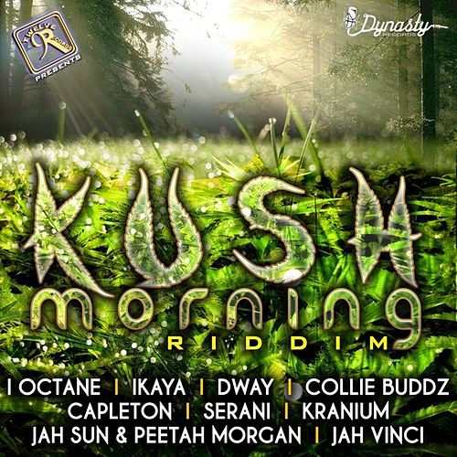Play & Download Kush Morning by Various Artists | Napster