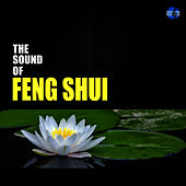 Play & Download The Sound of Feng Shui by Studio Sunset | Napster