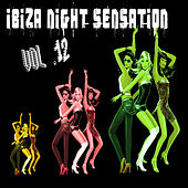 Ibiza Night Sensation Vol. 12 by Various Artists