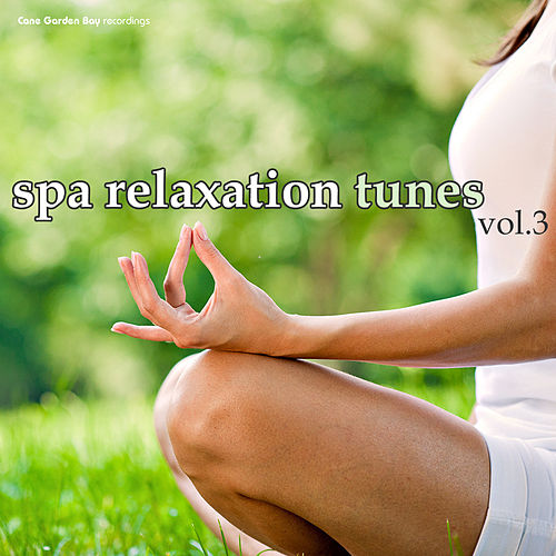 SPA Relaxation Tunes, Vol. 3 by Various Artists