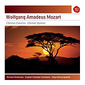 Play & Download Mozart: Clarinet Concerto - Clarinet Quintet by Richard Stoltzman | Napster