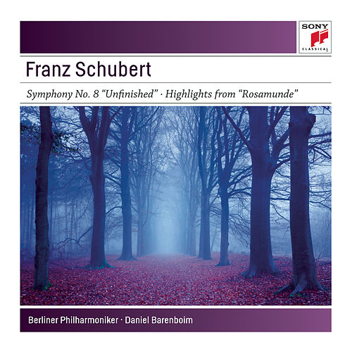 Symphony No. 8 'Unfinished'; Highlights from 'Rosamunde' by Various Artists