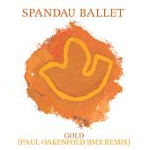 Gold (Paul Oakenfold BMX Remix) by Spandau Ballet