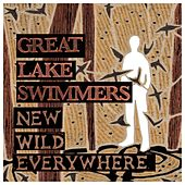 New Wild Everywhere by Great Lake Swimmers