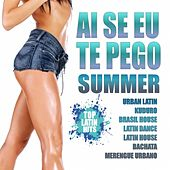 Ai Se Eu Te Pego Summer 2012 (Urban Latin, Bachata, Merengue, Reggaeton, Dembow Latin House) by Various Artists