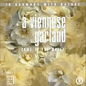 A Viennese Garland (Come To The Waltz !) by The Saint Petersburg Radio & TV Symphony Orchestra