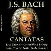Bach, Vol. 05 : Cantatas by Various Artists