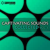 Captivating Sounds Collected, Vol. 1 by Various Artists