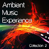 Play & Download Ambient Music Experience, Vol. 2 by Various Artists | Napster
