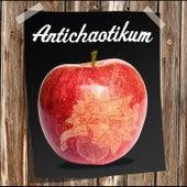 Antichaotikum von Schmidhammer