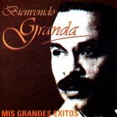 Play & Download Mis Grandes Exitos by Bienvenido Granda | Napster
