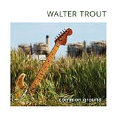 Play & Download Common Ground by Walter Trout | Napster