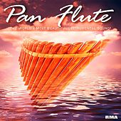 Play & Download Pan Flute by Pan Flute | Napster
