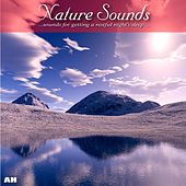Play & Download Nature Sounds by Ahanu Nature Sounds | Napster