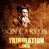 Tribulation (Remix) by Don Carlos