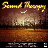 Play & Download Nature Sounds Music for Relaxation, Meditation, Deep Sleep, Studying, Relaxation and Tibetan Chakra Meditation by Sound Therapy, Spa, Yoga, Healing Massage, Baby Sleep and Chakra Balancing | Napster