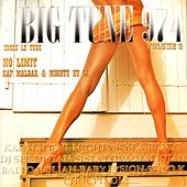 Big Tune 974, Vol. 2 by Various Artists