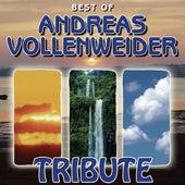 Jazzathon Tribute to Andreas Vollenweider by Jazzathon
