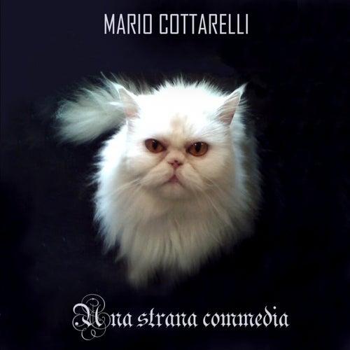 Una strana commedia by Mario Cottarelli