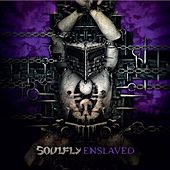 Play & Download Enslaved by Soulfly | Napster