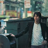 Jungle by Dwight Twilley