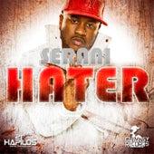 Hater by Serani