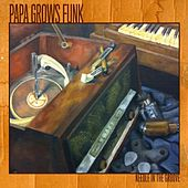 Play & Download Needle In the Groove by Papa Grows Funk | Napster