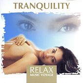 Relax Music Voyage - Tranquility by Fly2 Project