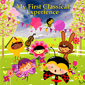 My First Classical Experience by Various Artists