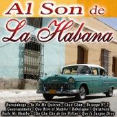 Play & Download Al Son de la Habana by Various Artists | Napster