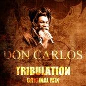 Tribulation (Original Mix) by Don Carlos