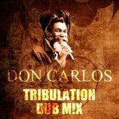 Tribulation Dub Mix by Don Carlos