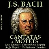 Bach, Vol. 06 - Cantatas & Motets by Various Artists