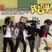 Meltin Pot (Volume 1) by Various Artists
