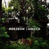 Anicca by Merzbow