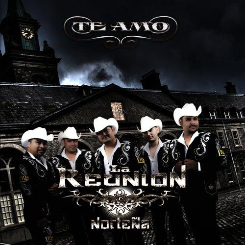 Play & Download Te Amo by La Reunion Nortena | Napster