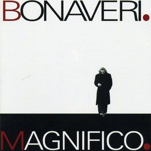 Magnifico di Germano Bonaveri