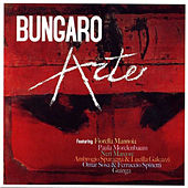 Play & Download Arte by Bungaro | Napster