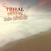 Play & Download Did Wrong by Tribal Seeds | Napster