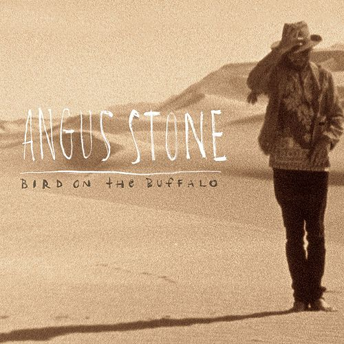 Play & Download Bird On the Buffalo by Angus & Julia Stone | Napster