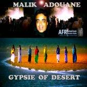 Gypsie of  Desert by Malik Adouane