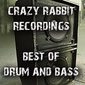 Play & Download Crazy Rabbit Recordings: Best of Drum and Bass by Various Artists | Napster