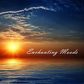 Play & Download Enchanting Moods by Various Artists | Napster