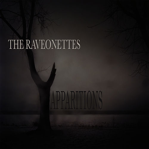 Into The Night von The Raveonettes