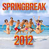 Play & Download Springbreak 2012 by The CDM Chartbreakers | Napster