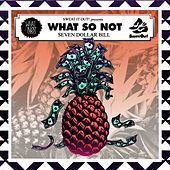7 Dollar Bill EP by What So Not