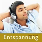 Play & Download Entspannung by Claudia Von Lienen | Napster