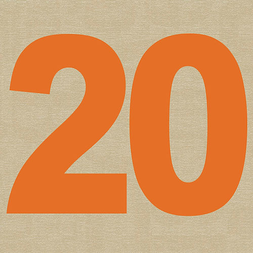 20 by Medeski, Martin and Wood