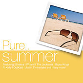 Pure... Summer von Various Artists